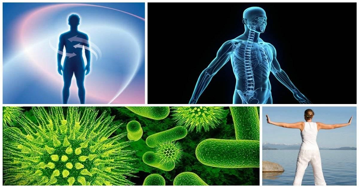 Cómo liberar tu cuerpo de toxinas y brillar con salud