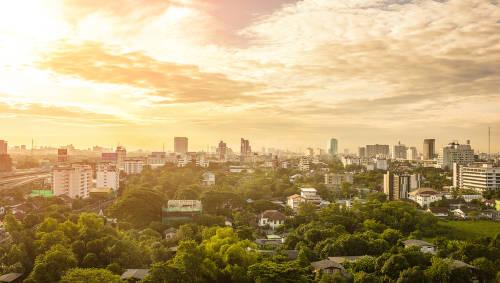 El proyecto de México para crear una hermosa ciudad-bosque