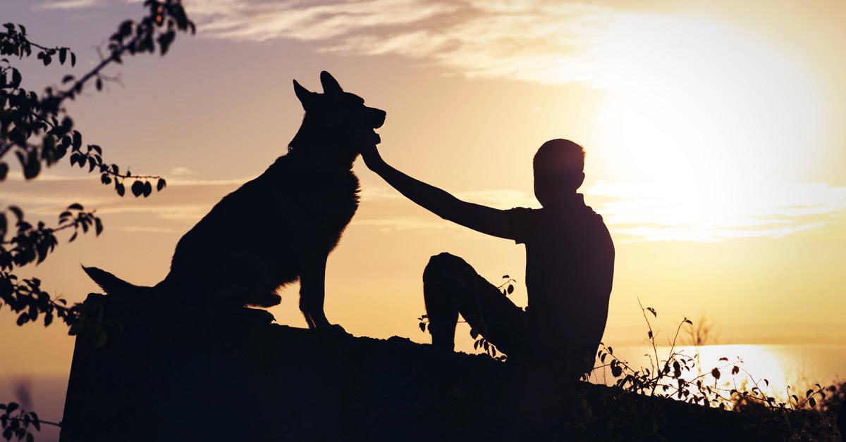 Consejos para afrontar el duelo por la pérdida de una mascota