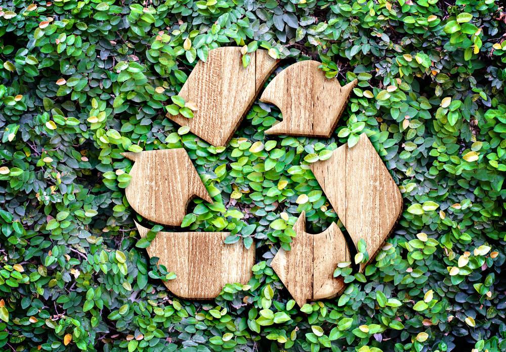 5 motivos por los que el reciclaje es tan importante
