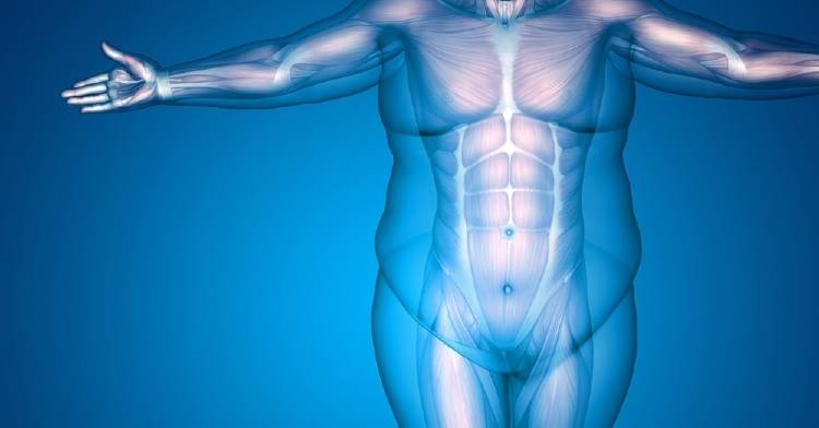 El factor emocional detrás de la obesidad: comprenderlo para desterrarlo