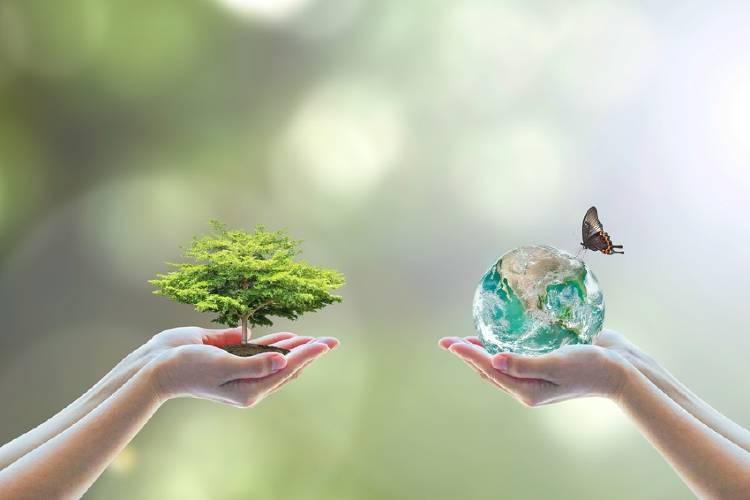 biodiversidad naturaleza vida