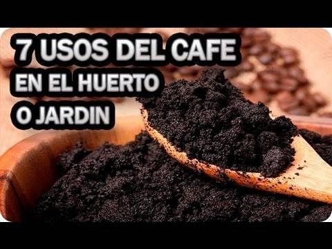 7 Usos del cafe en nuestro huerto o jardin