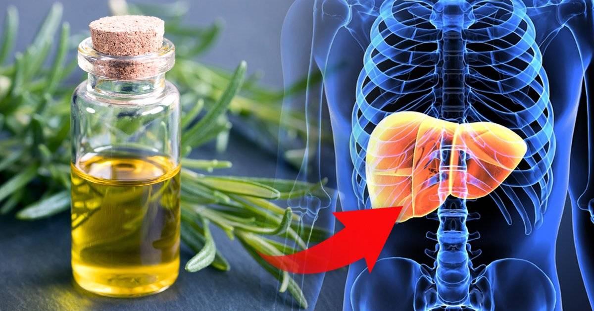 Descubre cómo utilizar el romero para mejorar la salud