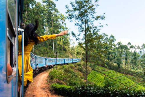 Un paseo por la isla de Sri Lanka y su mágica ruta de tren de Kandy a Ella