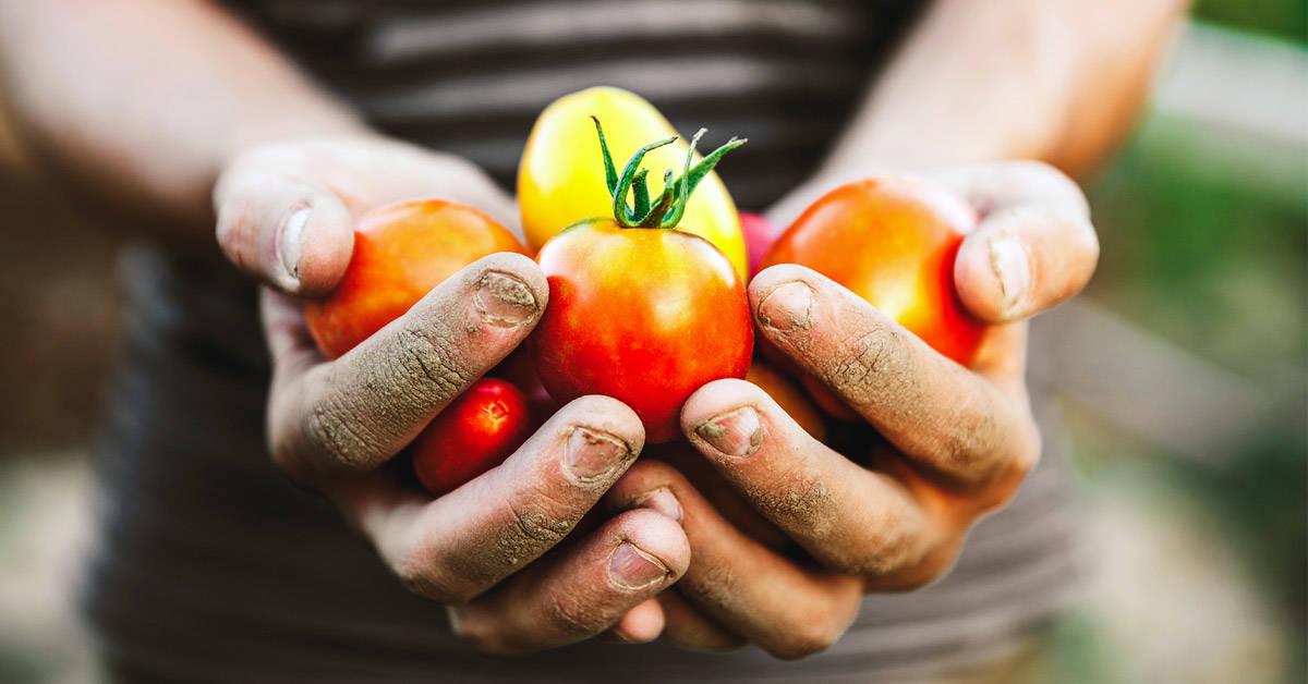 Comercio justo y consumo responsable: dos de los grandes pilares de Bioferia