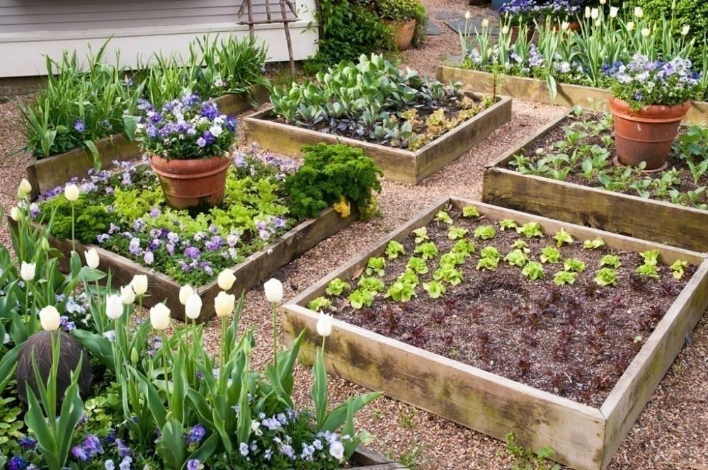Guía para la construcción de bancales elevados de jardinería