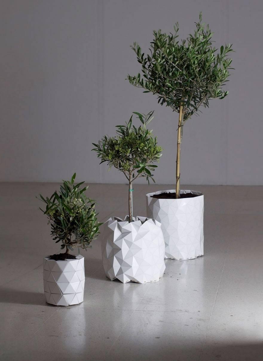 Una maceta que crece junto con las plantas