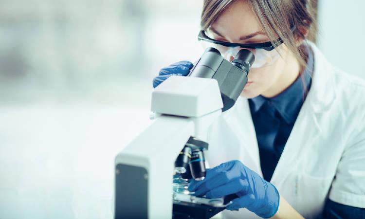 células madre y autofagia
