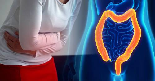 limpiar el intestino