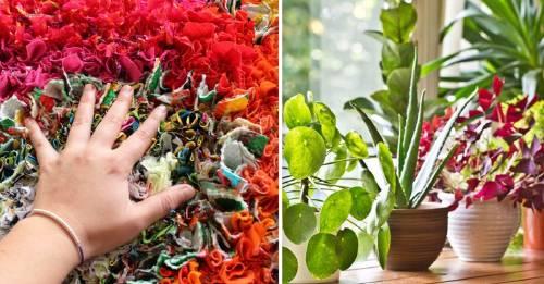5 ideas para decorar tu casa usando los sentidos