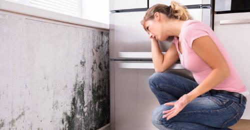 7 trucos para deshacerte de la humedad de la casa