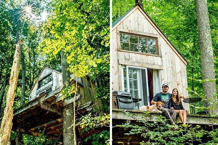 Wee House: una pequeña cabaña en medio de un bosque