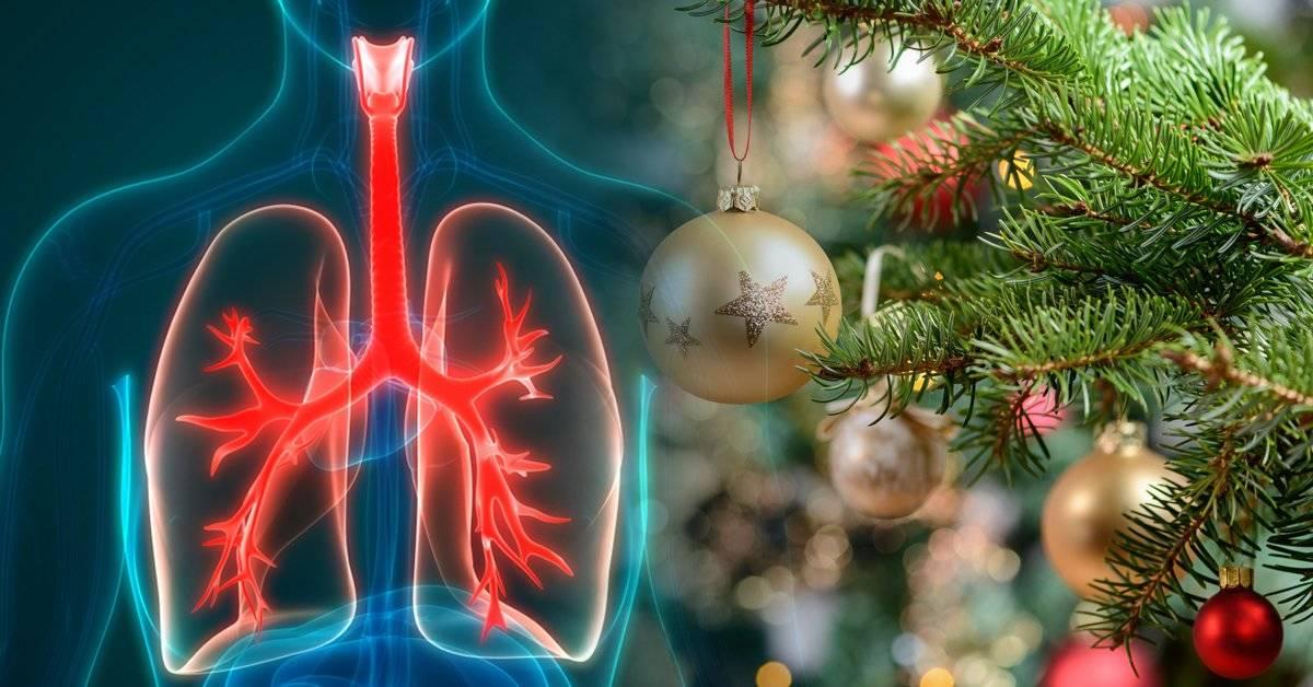Síndrome del árbol de Navidad: así son las alergias que aparecen misteriosamente solo en diciembre