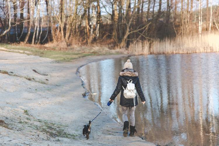 Pasear al perro es una forma de combatir el sedentarismo
