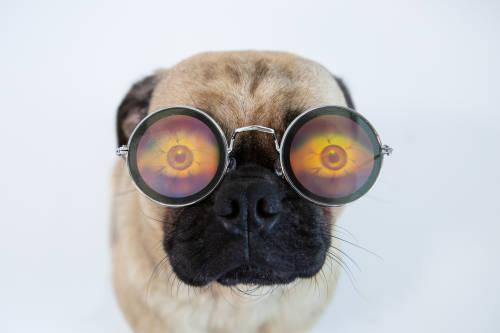 Desafío viral: responde qué número ves y descubre si necesitas anteojos