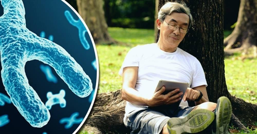 ¿La juventud eterna está en una proteína? Algunos científicos dicen saber ..