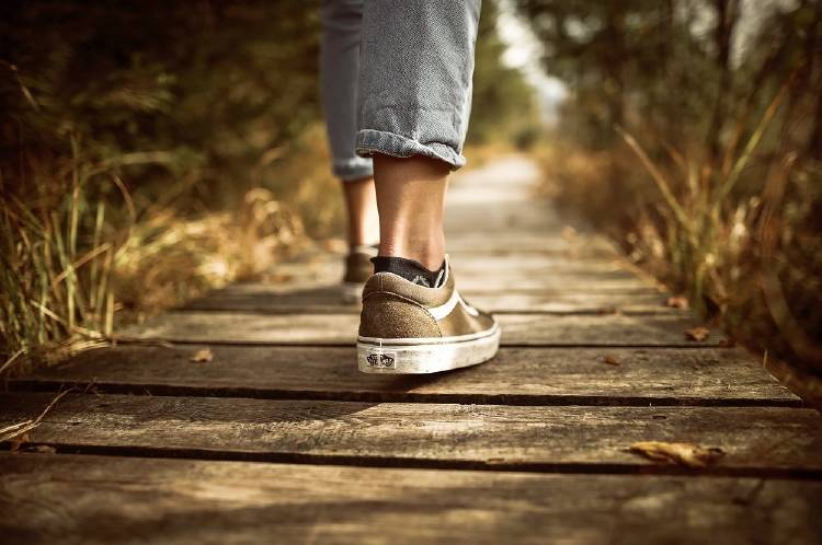 seguir camino