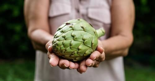 Cómo cultivar alcachofas en tu casa y disfrutar sus maravillosos beneficios