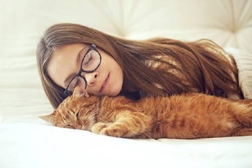 8 razones por las que tener un gato es bueno para tu salud