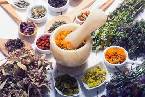 10 hierbas medicinales que no pueden faltar en tu botiquín natural
