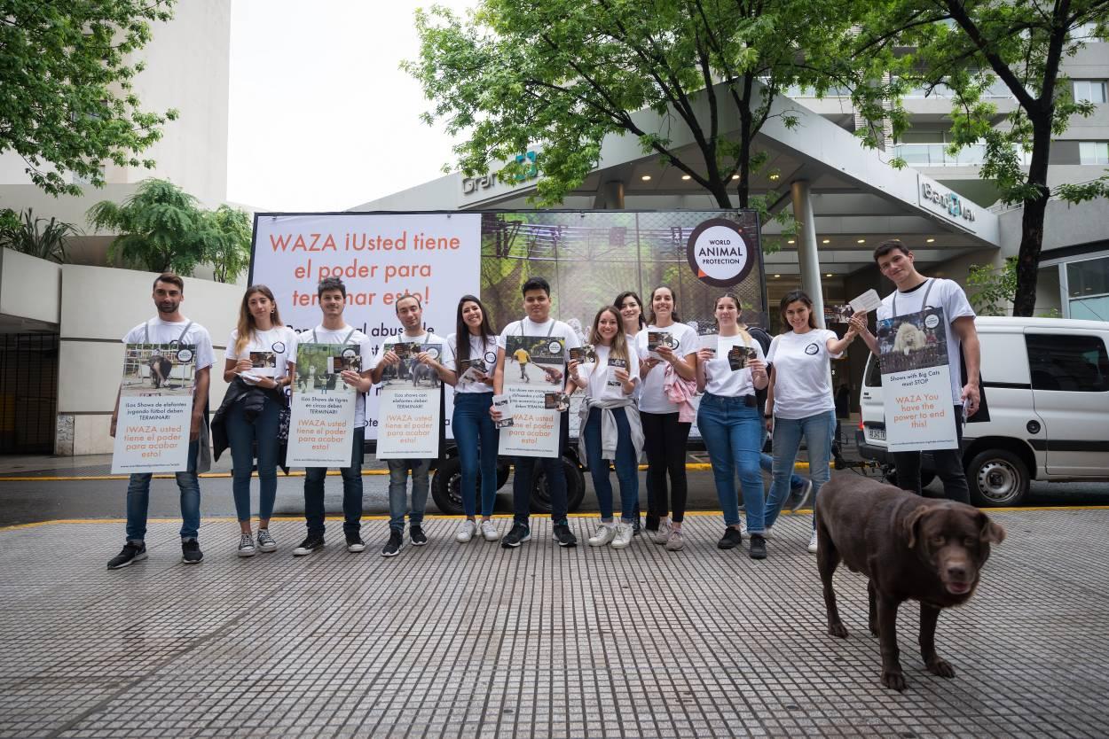 World Animal Protection exige que se acabe con la crueldad en los zoológicos