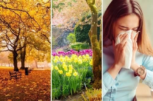 5 formas de mejorar tu salud en abril