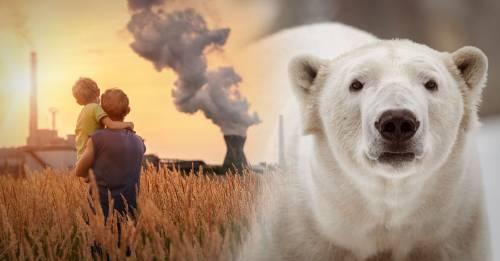 Las bases que sostienen al planeta están en jaque: ¿estamos en problemas?