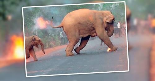 Una pequeña en llamas: la desgarradora imagen que expuso la crueldad contra l..