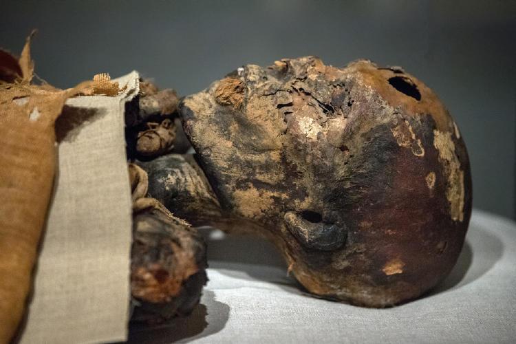 ¡De terror! El escalofriante secreto que revelaron las momias de Atacama