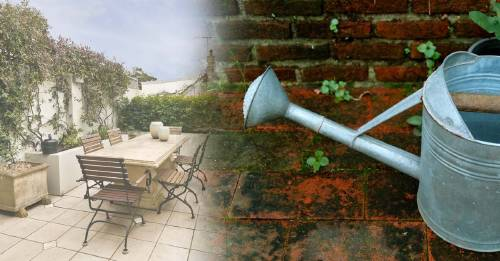 ¿Eliminar manchas verdes de las baldosas del patio? Haz esto y déjalo como nuevo