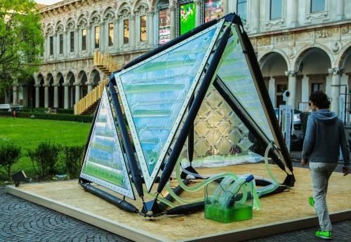 En Londres inventan un dispositivo que genera oxígeno a partir de algas y bot..