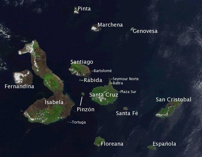 Aproximadamente 22 toneladas de basura han sido retiradas de las islas Galápagos.