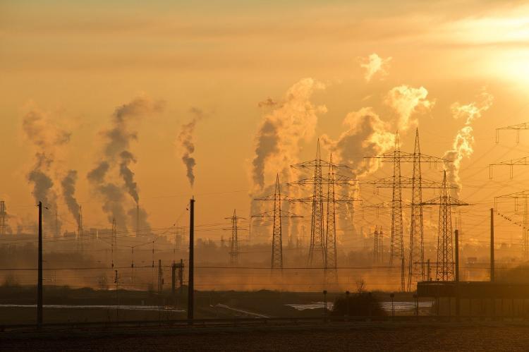 Contaminación ambiental: ¿Cuáles son los tipos y sus consecuencias?