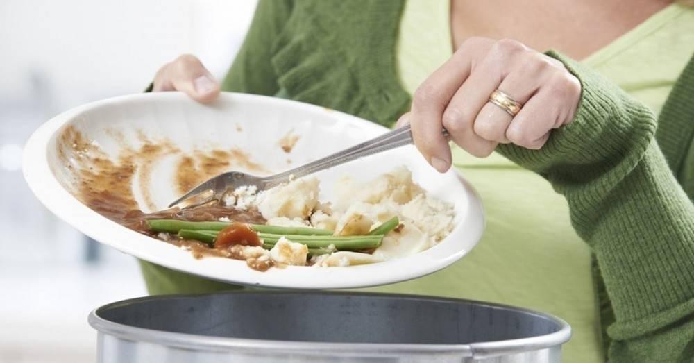 ¿Quiénes tiran más comida a la basura? Consejos y recetas para evitar desec..