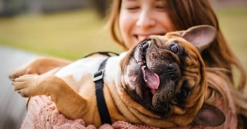 Las raíces del amor por los animales: así es como formamos lazos profundos con ellos