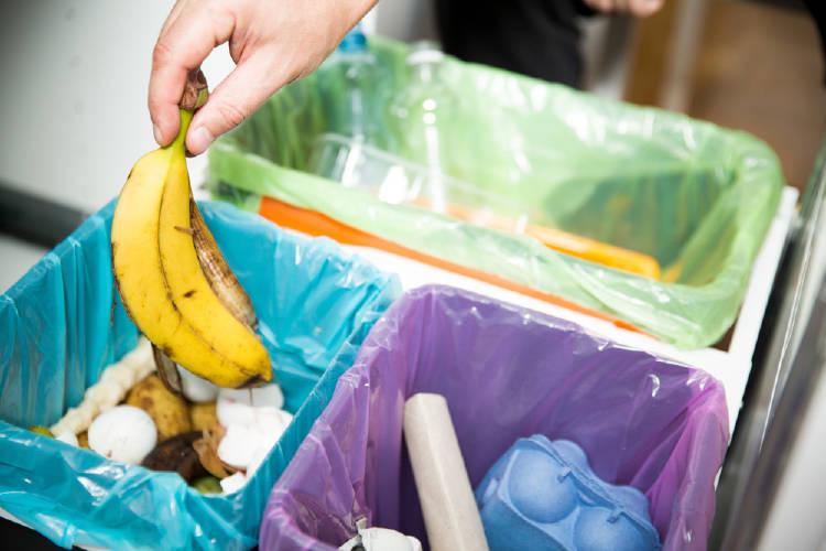Separar la basura en distintos cestos