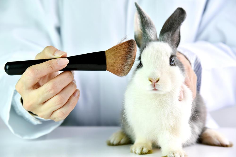 México: diputados aprueban la prohibición de las pruebas cosméticas en animales