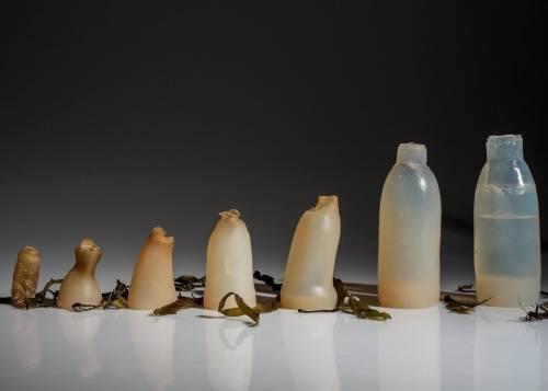El mundo sería muy diferente si todos usáramos botellas como ésta