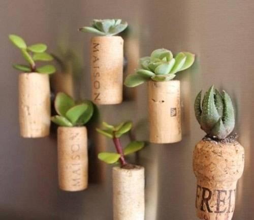 Plantar en corchos