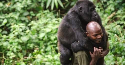 5 documentales de animales que te mostrarán su cara oculta