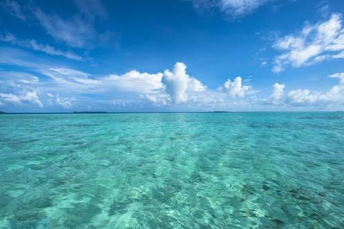 El cambio climático reducirá el oxígeno de los océanos
