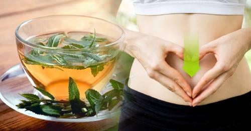 Infusión de salvia para mejorar la digestión y tener un vientre plano