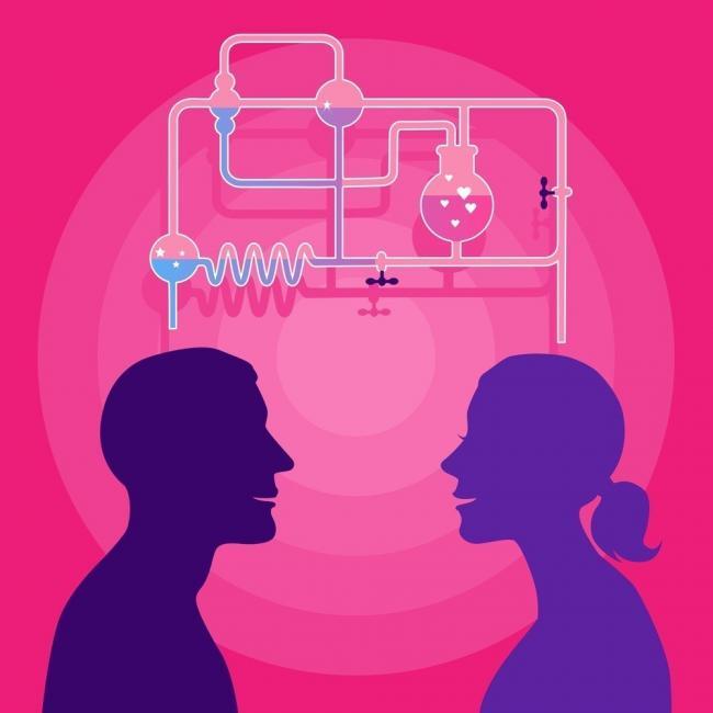 química sexual pareja