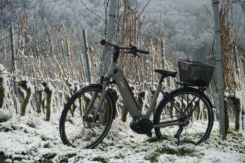 Descubre todas las ventajas de tener una bicicleta eléctrica