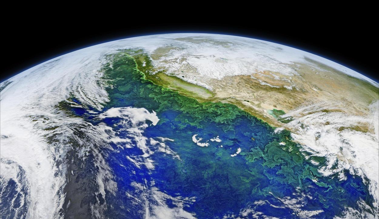 Documental La Última Hora: una esperanza para revertir el impacto humano sobre la Tierra