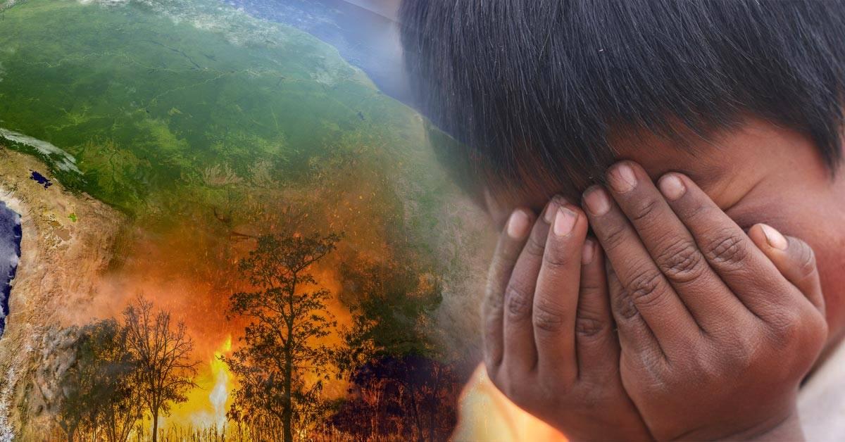 Incendios en el Amazonas: qué otros países, además de Brasil, son afectados por