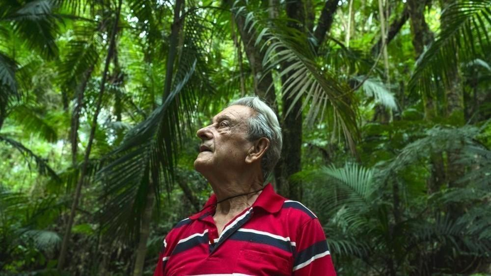 Hoy vive rodeado de la naturaleza que plantó hace 40 años