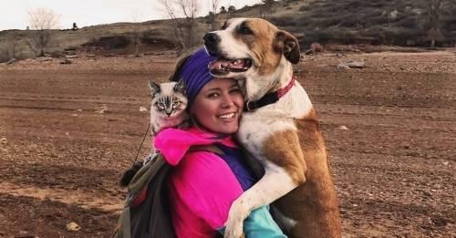 Hermosos recuerdos de un perro y un gato que viajan juntos por el mundo