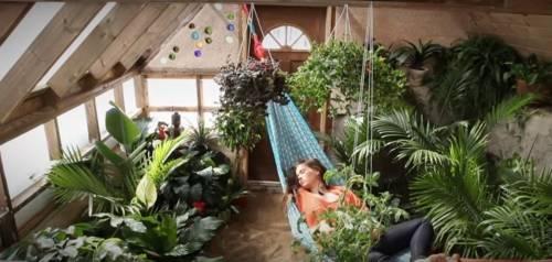Un invernadero integrado al hogar para tener vegetales todo el año